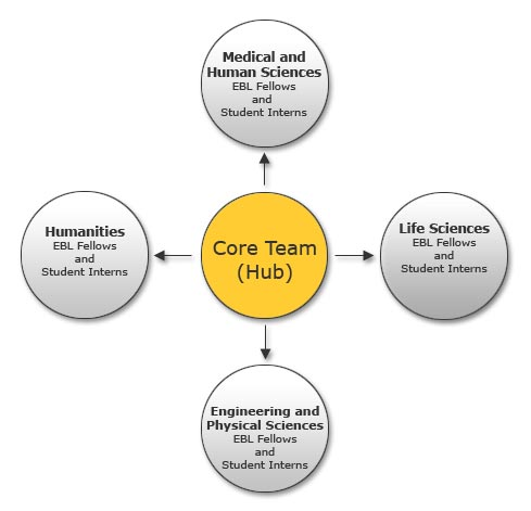 about ceebl   centre for excellence in enquiry based learning  the    hub and spoke model diagram  spokes are faculty co ordinators and student interns